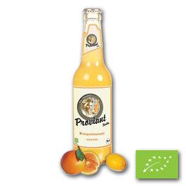 Proviant Sinaasappel BIO (12x330ml)