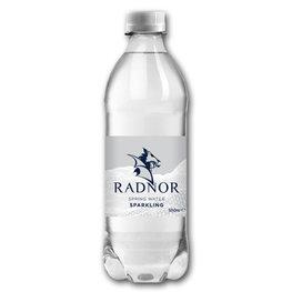 Radnor PET Sparkling (24x500ml)